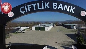 ÇİFTLİK BANK 113,4 MİLYONLA FİRARDA