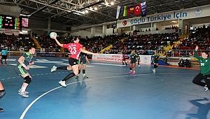 Türkiye: 30 - Litvanya: 24