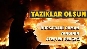 Bursa'daki orman yangının perde arkası