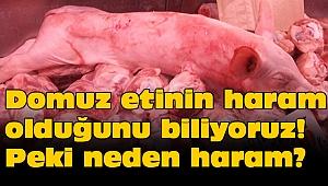 Domuz etinin haram olduğunu biliyoruz! Peki neden haram?