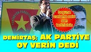 Demirtaş'tan seçim çağrısı AK Parti'ye oy verin