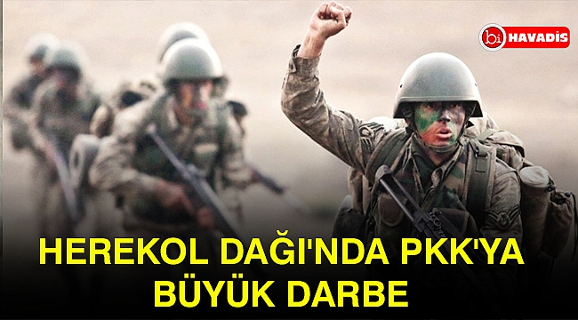 Herekol Dağı'nda PKK'ya büyük darbe