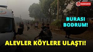 Bodrum'da orman yangını köylere kadar ulaştı!..