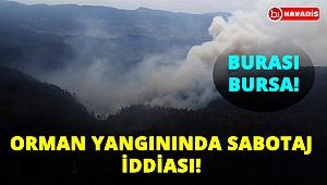 Bursa'da orman yangınında sabotaj iddiası!..