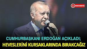 Cumhurbaşkanı Erdoğan: Ne Dicle ne de Fırat'ın kuzularını çakallara kaptırmayacağız
