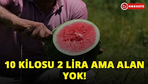 İstanbul'da 1 lira olan karpuzların kilosu Adana'da 10 lira. Ama alan yok...