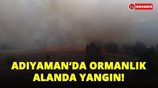 Son Dakika! Adıyaman Gölbaşı ilçesine bağlı Akçakaya köyünde orman yangını!..