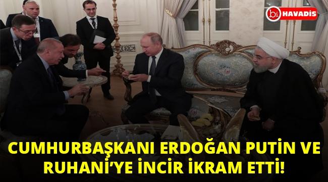 Erdoğan, Putin ve Ruhani'ye incir ikram etti!..