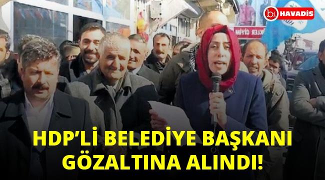 Son Dakika! Bir HDP'li belediye başkanı daha gözaltına alındı!..