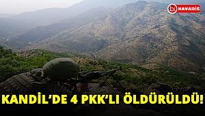 Son dakika: TSK ve MİT'in ortak operasyonunda 4 PKK'lı öldürüldü!..