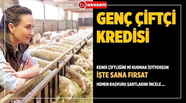 Ziraat Bankası Genç Çiftçi Akademisi Nedir? Hayvancılık yapma hayaline destek...