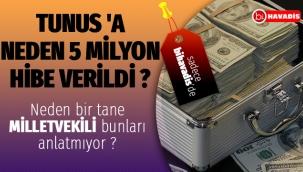 TUNUS 'A NEDEN 5 MİLYON HİBE VERİLDİ LÜTFEN DİKKATLİ OKUYUN..