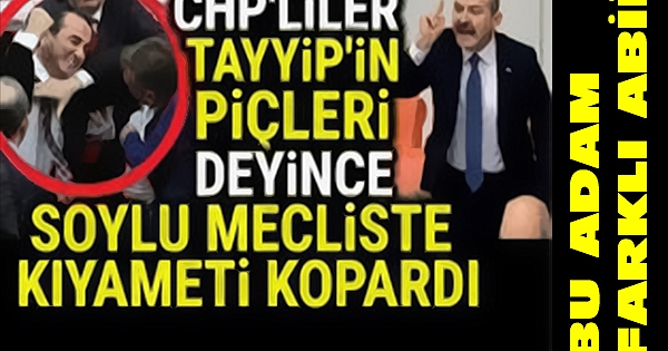 """CHP'liler """"TAYYİP'in P*ÇLERİ"""" Deyince SOYLU KIYAMETİ KOPARDI.."""